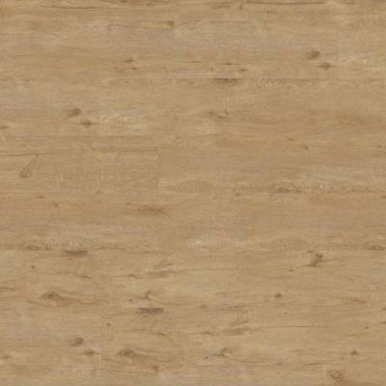 Panel winylowy – TARKETT – Starfloor Click 55 Plus – Alpine Oak Natural