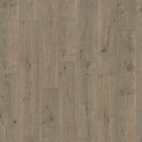JOKA – podłogi laminowane – kolekcja SKYLINE – 5525 OAK SUNLIGHT